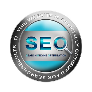milwaukee seo company, seo milwaukee, milwaukee seo expert, software development services
